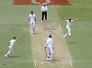 Daniel Wilkins, The Sunday Times - Ryan Harris celebrates the wicket of England's Steven Finn, the final wicket of the innings.