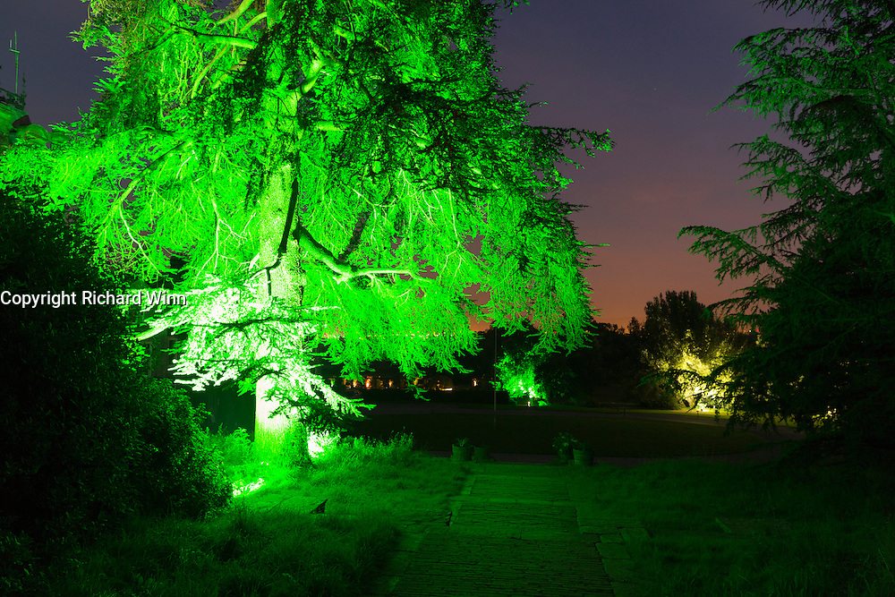 Illumination of a tree in Hestercombe Gardens. Part of the Illumina Project by Ulf Pedersen.