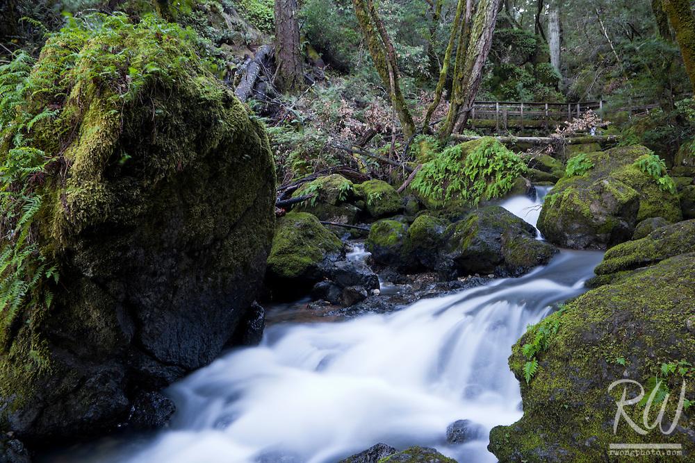 Cataract Creek and Bridge, Marin Municipal Water District, California