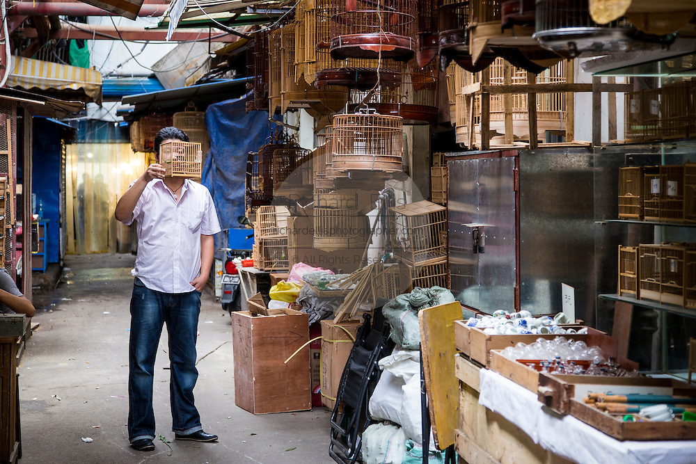 A man inspects a song bird at a market in Shanghai, China