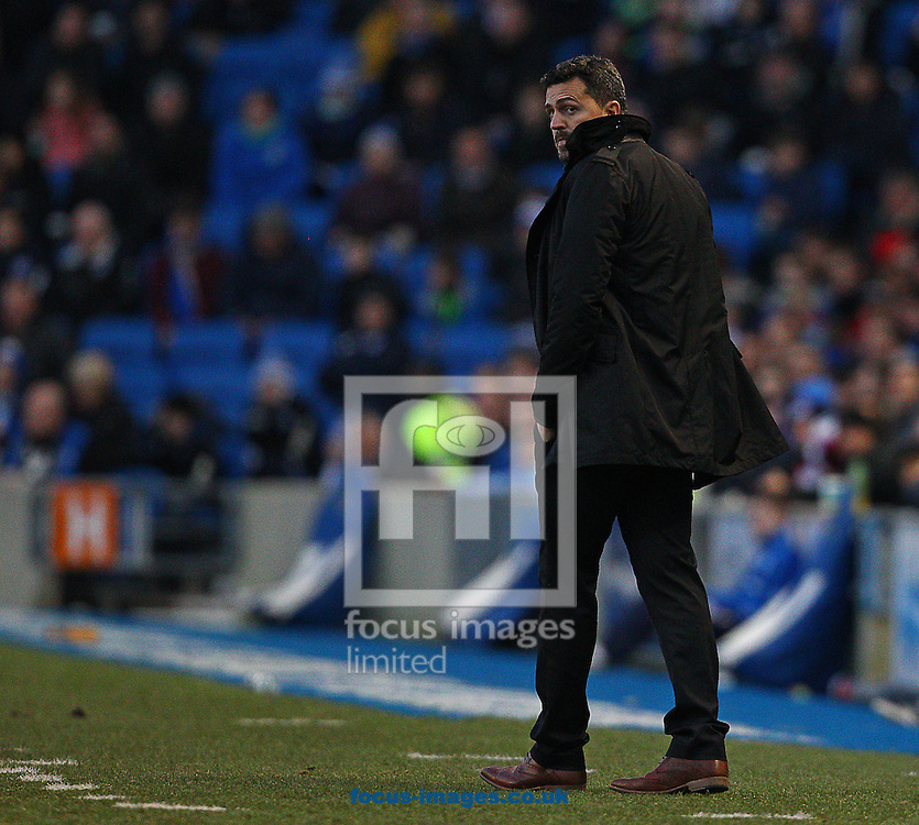 Picture by Paul Terry/Focus Images Ltd +44 7545 642257<br /> 11/01/2014<br /> Oscar Garcia, Manager of Brighton and Hove Albion during the Sky Bet Championship match at the American Express Community Stadium, Brighton and Hove.