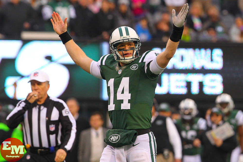 Dec 2, 2012; East Rutherford, NJ, USA; New York Jets quarterback Greg McElroy (14) looks for a touchdown call during the second half of their game against the Arizona Cardinals at MetLIfe Stadium.