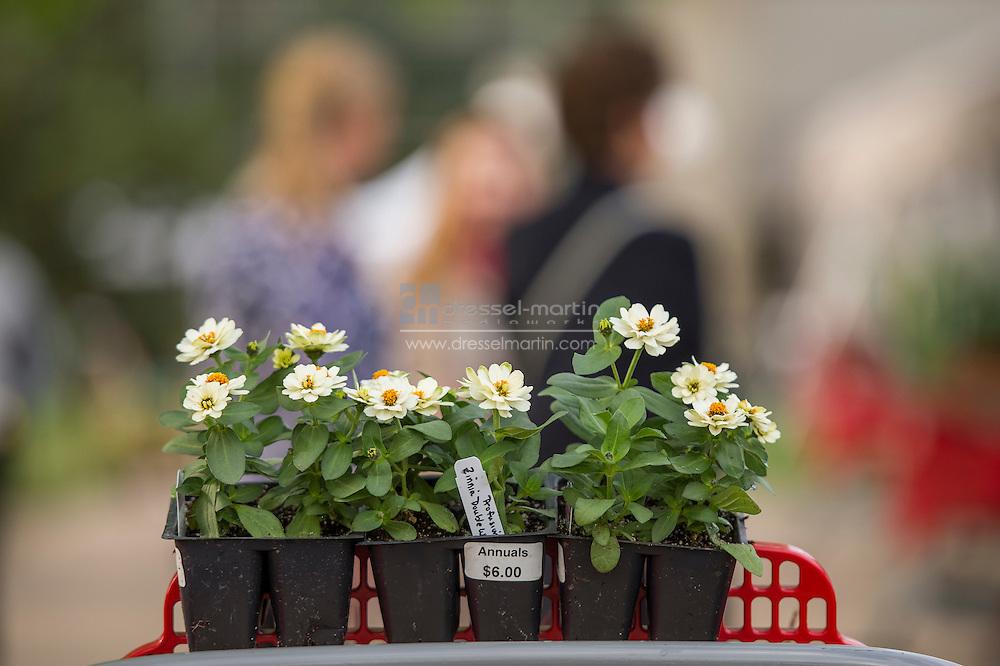 plant sale preview party