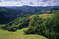 Green hills in spring, Austin Creek State Rec. Area, Sonoma County, California