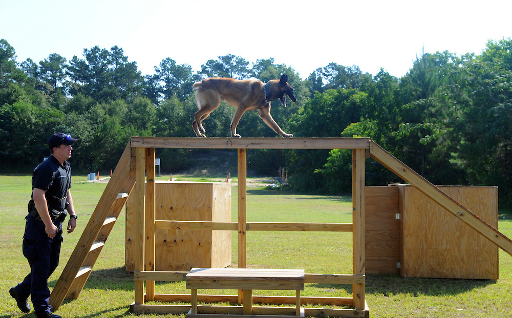 Officer Eric Hatten runs Epo through an obstacle course on Tuesday during the dedication of the Hattiesburg Police Department's K-9 training course. Bryant Hawkins/The Hattiesburg American