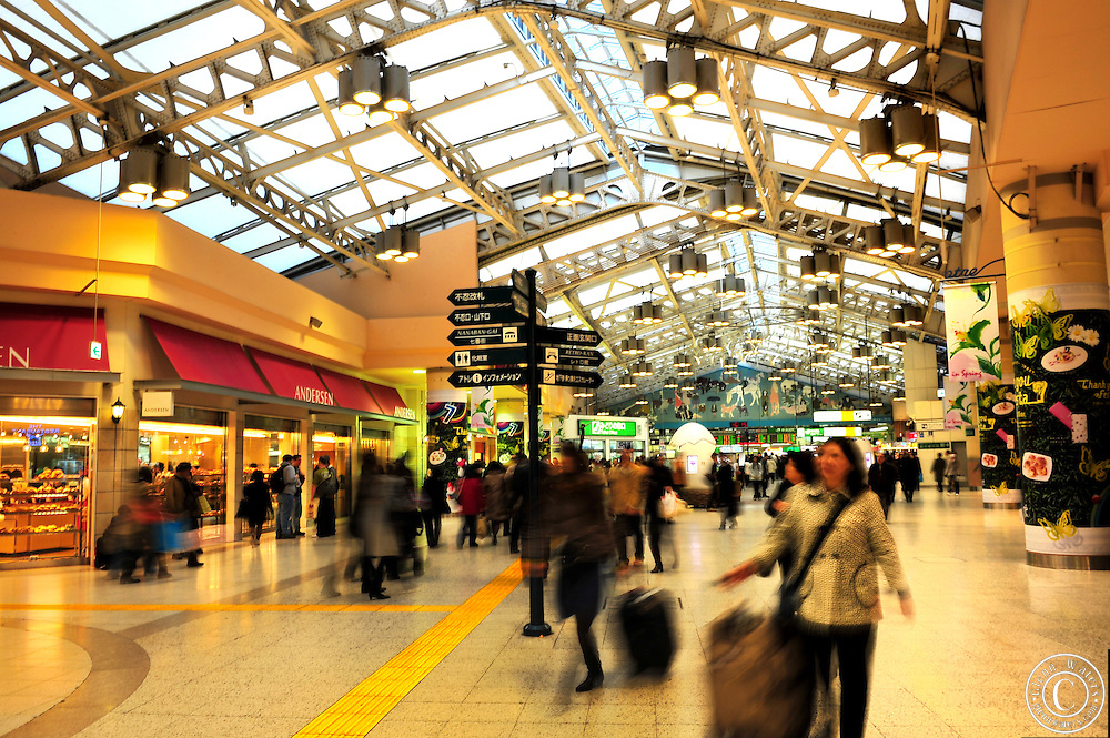 Ueno station is one the busiest train stations in Tokyo and is surrounded by extensive shopping arcades.