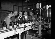 New Bottling plant for D.E.Williams..1975..19.06.1975..06.19.1975..19th June 1975..The Minister for Justice, Mr Patrick Cooney TD, officially opened the new one and a half million gallon per annum soft drink facility at Tullamore,Co Offaly. The new plant represents an investment of over a quarter million pounds by the Williams Group. It is hoped that this investment will create further employment for the area...Image of board members and the Minister watching the operation of the bottling machinery in action.
