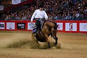 Lorenzo De Simone on Smoking Dun It during the Equestrian NRHA European Derby Open Finals Equita Lyon 2017 on November 4, 2017 at Eurexpo Lyon in Chassieu, near Lyon, France - Photo Romain Biard / Isports / ProSportsImages / DPPI