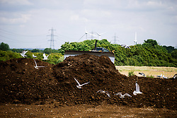 Work commences to install two fibre based pitches at The Colony, Bristol Rovers new training ground on Hortham Lane near Almondsbury - Rogan/JMP - 09/06/2020 - FOOTBALL - Almondsbury - Bristol, England.