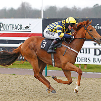Smugglers Gold and Tom Queally winning the 2.00 race