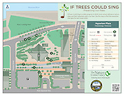 "Vector map illustration of the Tennessee Aquarium and downtown Chattanooga, Tennessee. The map shows the points of interest and walking trails. In addition, the map show the tree locations of the Nature Conservancy's ""If Tress Could Sing"" project."