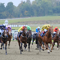 Lingfield 4th October
