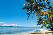 Beach and cocopalm trees at Matangi Private Island Resort, Fiji.