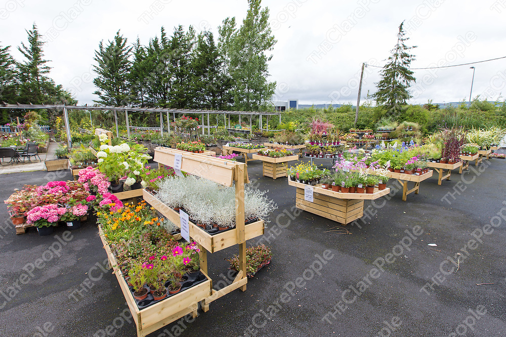 Busy Bee Garden Centre. - Busy Bee Garden Centre The Clare People