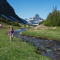 alpine meadow woman hiking along siyeh creek glacier national park