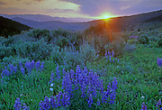 Sunset from Lemhi Pass looking east in Idaho. Beaverhead Mountains along the Idaho Montana divide.