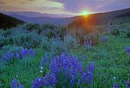Sunset from Lemhi Pass looking east in Idaho. Beaverhead Mountains along the Idaho Montana divide.