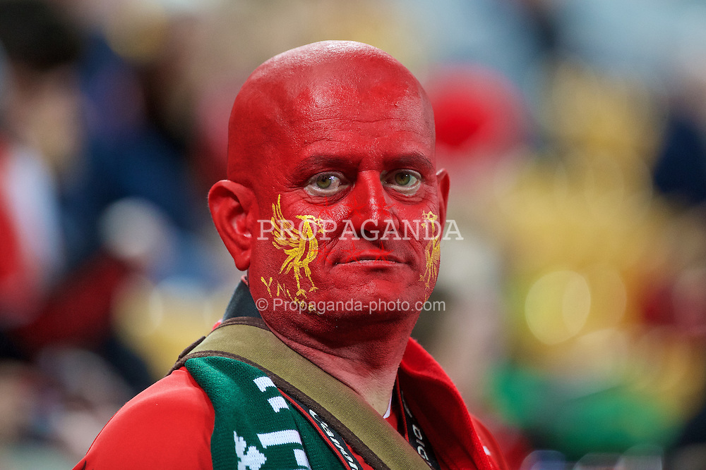 BRISBANE, AUSTRALIA - Friday, July 17, 2015: A Liverpool supporter with his face painted red before a preseason friendly match against Brisbane Roar at the Suncorp Stadium on day five of the club's preseason tour. (Pic by David Rawcliffe/Propaganda)