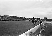 "15/07/1967<br /> 07/15/1967<br /> 15 July 1967<br /> Hennessy Handicap at Leopardstown Races, Leopardstown Racecourse, Co. Dublin.  J.A.N. Glover's ""My Kuda"" (centre, ridden by T.P. Burns and trained by Aubrey Brabazon, winning the Hennessy Handicap from Michael L. Healy's ""Talgo Abbess"" (centre behind winner) ridden by L. Johnson and trained by K. Prendergast, with R.S. Reynolds ""Little Hawk"" (right the rails), third, ridden by G. McGrath and trained by Murless."
