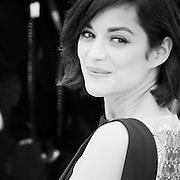 "Black & White Portrait ""Marion Cotillard"" during the 66th Annual Cannes Film Festival"
