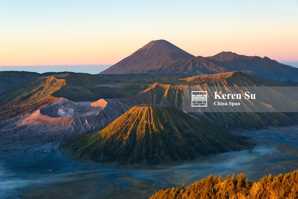 Mount Bromo, Semeru and Batok at dawn, Bromo Tengger Semeru National Park, East Java, Indonesia