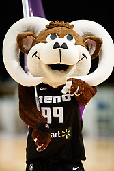 November 19, 2017 - Reno, Nevada, U.S - Bruno the Bighorn before the NBA G-League Basketball game between the Reno Bighorns and the Long Island Nets at the Reno Events Center in Reno, Nevada. (Credit Image: © Jeff Mulvihill via ZUMA Wire)