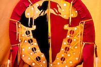 Buffalo Head Decoration adorns Indian Tipi, Banff Alberta
