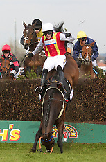 100408 Aintree Grand National 2010