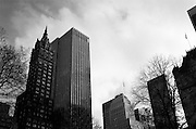 Manhattan Skycrapers in Black and White