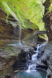 "Watkins Glen State Park, New York State.<br /> From Wikipedia:  ""Watkins Glen State Park is located outside the village of Watkins Glen, New York, south of Seneca Lake in Schuyler County in the Finger Lakes region. The park's lower part is near the village, while the upper part is open woodland. It was opened to the public in 1863 and was privately run as a tourist resort until 1906, when it was purchased by New York State. Since 1924, it has been managed by the Finger Lakes Region of the New York State Office of Parks, Recreation and Historic Preservation.<br /> ""Jacob's Ladder, near the upper entrance to the park, has 180 stone steps, part of the over 800 total on the trails. The centerpiece of the park is a 400-foot-deep (120 m) narrow gorge cut through rock by a stream – Glen Creek – that was left hanging when glaciers of the Ice age deepened the Seneca valley, increasing the tributary stream gradient to create rapids and waterfalls wherever there were layers of hard rock. The rocks of the area are sedimentary of Devonian age that are part of a dissected plateau that was uplifted with little faulting or distortion. They consist mostly of soft shales, with some layers of harder sandstone and limestone.<br /> ""The park features three trails – open mid-May to early November – by which one can climb or descend the gorge. The Southern Rim and Indian Trails run along the wooded rim of the gorge, while the Gorge Trail is closest to the stream and runs over, under and along the park's 19 waterfalls by way of stone bridges and more than 800 stone steps. The trails connect to the Finger Lakes Trail, an 800-mile (1280 km) system of trails throughout New York state."