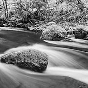 Sweet Creek White Water - Mapleton, Oregon - Infrared Black & White