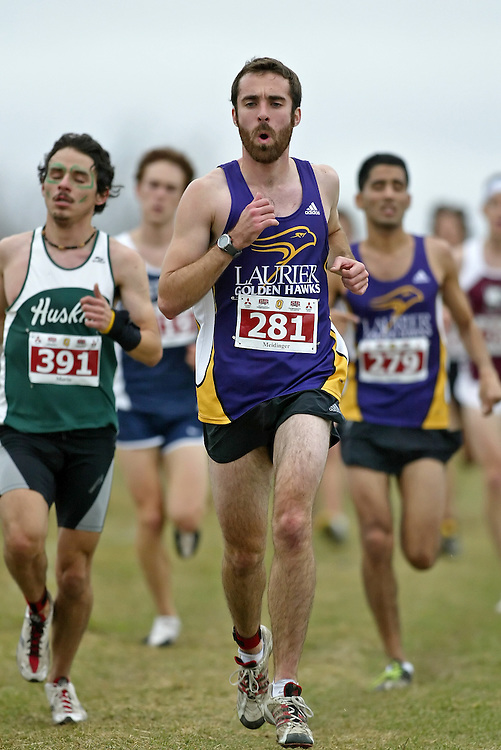 (Kingston, Ontario -- 14 Nov 2009)  BRENT MEIDINGER of the Laurier University runs to 93 place at the  2009 Canadian Interuniversity Sport CIS Cross Country Championships at Forth Henry Hill in Kingston Ontario. Photograph copyright Sean Burges / Mundo Sport Images, 2009.