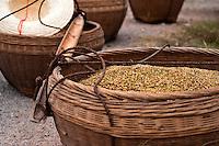 Baskets of grain freshly harvested.