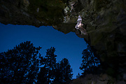 Bat (myotis sp) flying into a cave at dusk   in Central Oregon. © Michael Durham