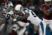 January 24, 2016: Carolina Panthers vs Arizona Cardinals. Luke Kuechly, Thomas Davis