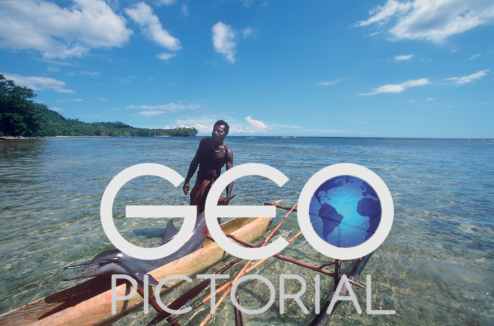Robert, a shark caller from Kontu village on the West Coast of New Ireland, brings in a dolphin he speared on his outrigger canoe..Kontu, New Ireland Province, Papua New Guinea;