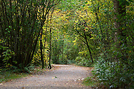 Little River Loop Trail at Campbell Valley Park in Langley, British Columbia, Canada