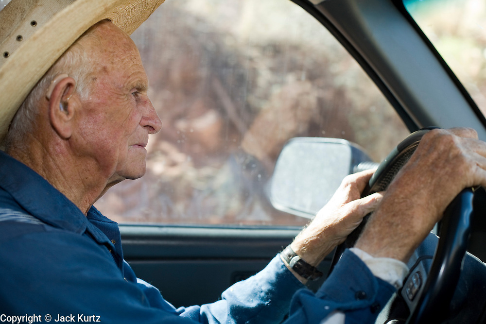 "Aug 9, 2008 -- COLORADO CITY, AZ: JOSEPH JESSOP, 86, patriarch of the Jessop family, polygamists and members of FLDS in Colorado City, AZ, drives his pickup truck through town. Colorado City and neighboring town of Hildale, UT, are home to the Fundamentalist Church of Jesus Christ of Latter Day Saints (FLDS) which split from the mainstream Church of Jesus Christ of Latter Day Saints (Mormons) after the Mormons banned plural marriage (polygamy) in 1890 so that Utah could gain statehood into the United States. The FLDS Prophet (leader), Warren Jeffs, has been convicted in Utah of ""rape as an accomplice"" for arranging the marriage of teenage girl to her cousin and is currently on trial for similar, those less serious, charges in Arizona. After Texas child protection authorities raided the Yearning for Zion Ranch, (the FLDS compound in Eldorado, TX) many members of the FLDS community in Colorado City/Hildale fear either Arizona or Utah authorities could raid their homes in the same way. Older members of the community still remember the Short Creek Raid of 1953 when Arizona authorities using National Guard troops, raided the community, arresting the men and placing women and children in ""protective"" custody. After two years in foster care, the women and children returned to their homes. After the raid, the FLDS Church eliminated any connection to the ""Short Creek raid"" by renaming their town Colorado City in Arizona and Hildale in Utah. A member of the Jessop family weeds the community corn plot in Colorado City, AZ. The Jessops are a polygamous family and members of the FLDS.     Photo by Jack Kurtz / ZUMA Press"