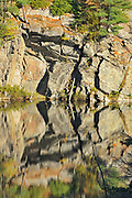 Reflection of rock in wetland, DOrset, Ontario, Canada