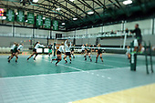 2017 Illinois Wesleyan Titan Women's Volleyball photos