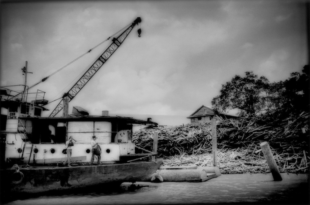 Timber ship moored in the Lower Rejang River at a landing composed of tons of discarded lumber from the rainforest, Sarawak, Malaysian Borneo.