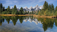 The Landing is one of my favorite spots in the Tetons and offers the opportunity for incredible reflections of the mountains.  It was a beautiful morning and the water was smooth as glass.  I was able to capture both the reflection and the water grass visible through the clear water.