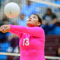 Window Rock Scout Sonja Ayze (13) volleys at the net to the Ganado Hornets at Ganado High School in Burnside Tuesday.