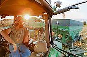 Farmer peering from tractor.<br />