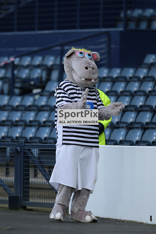 Harry  during the Queens Park FC V Dumbarton FC Petrofac Training Cup 18th August 201(c) Andy Scott | SportPix.org.uk