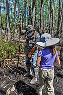 A guide points out where a snake has left its trail in the mud to a girl visiting Big Cypress National Preserve.