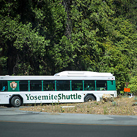 The Yosemite shuttle bus is seen inside Yosemite National Park on Sunday, September 22, 2019 in Yosemite, California. (Alex Menendez via AP)