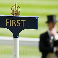 ASCOT, ENGLAND - JUNE 20:  The winner place in the parade ring on the fifth and final day of Royal Week at Ascot Racecourse on June 20, 2009 in Ascot, England  (Photo by Marco Secchi/Getty Images)