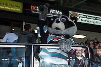 KELOWNA, CANADA - FEBRUARY 2: Rocky Racoon, the mascot of the Kelowna Rockets on February 2, 2016 at Prospera Place in Kelowna, British Columbia, Canada.  (Photo by Marissa Baecker/Shoot the Breeze)  *** Local Caption *** Rocky Racoon;