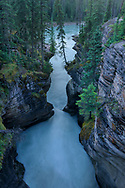 North America, Canada, Canadian,Alberta, Rocky Mountains, Jasper National Park, UNESCO, World Heritage, Athabasca Falls